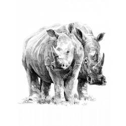 Obrázek Malování SKICOVACÍMI TUŽKAMI-nosorožci