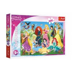 Obrázek Puzzle Půvabné princezny/Disney 100 dílků 41x27,5cm v krabici 29x19x4cm