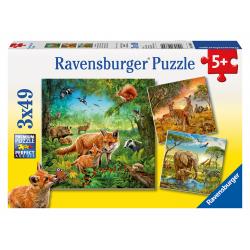 Obrázek Puzzle Země živočichů 3x49d