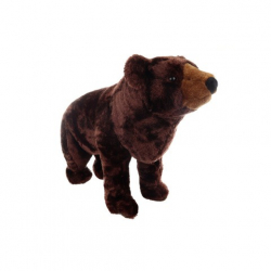 Obrázek Plyš Medvěd hnědý