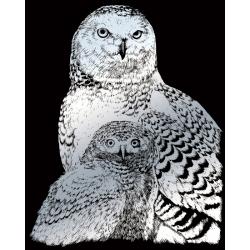 Obrázek Škrabací obrázek stříbrný - Sněžné sovy