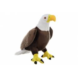 Obrázek Plyš Orel bělohlavý velký