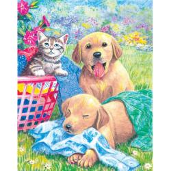Obrázek Malování podle čísel PASTELKAMI - kotě se štěňaty