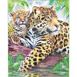 Obrázek Maľovanie podľa čísel pastelkami - Jaguári