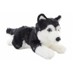 Obrázek Plyš Husky ležící 30 cm