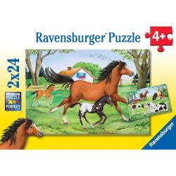 Obrázek Puzzle Svet koní 2x24p