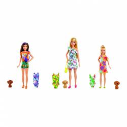 Obrázek Barbie Dreamtopia sestra s plavkami