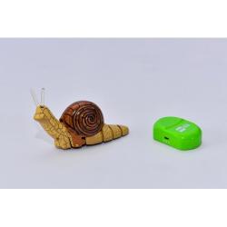 Obrázek Hlemýžď na ovládání - 2 druhy