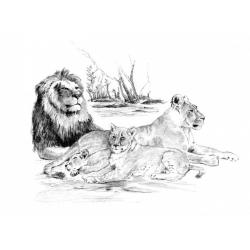 Obrázek Malování SKICOVACÍMI TUŽKAMI - Odpočívající smečka lvů