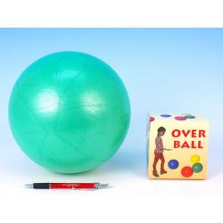 Obrázek Míč Overball rehabilitační 26cm