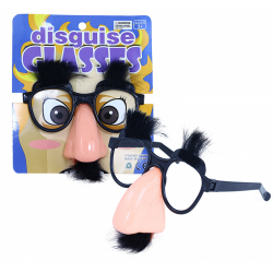 Obrázek brýle s nosem a knírem