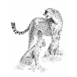 Obrázek Malování SKICOVACÍMI TUŽKAMI- Gepardí rodinka