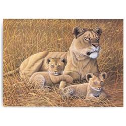 Obrázek Malování podle čísel- Lvice s lvíčaty