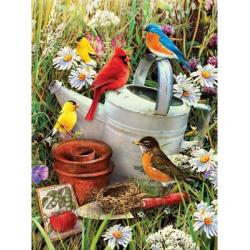 Obrázek Malování podle čísel - Ptáčci u zahradní konve