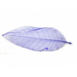 Obrázek Listy magnolie, barevný - 10 ks, o velikosti 20 cm - fialový
