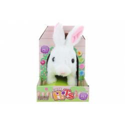 Obrázek Plyš králík na baterie
