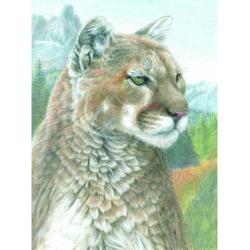 Obrázek Malování podle čísel PASTELKAMI - Puma