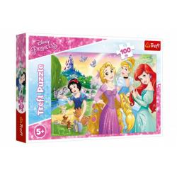 Obrázek Puzzle Disney princezny - Sen o princezně 100 dílků 41x27,5cm v krabici 29x19x4cm