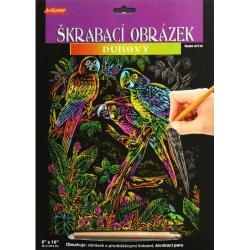 Obrázek Škrabací obrázek duhový - Papoušci