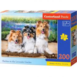 Obrázek Puzzle Castorland 200 dílků premium - Kolie v Levandulové zahradě