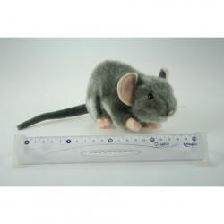 Obrázek Plyš Myš