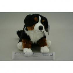 Obrázek Plyš Bernský pes