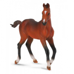 Obrázek Quarter horse - hříbě