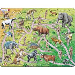 Obrázek Puzzle Od opice k člověku ! - anglicky 83 dílků