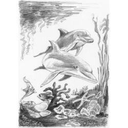 Obrázek Malování SKICOVACÍMI TUŽKAMI-Delfíni