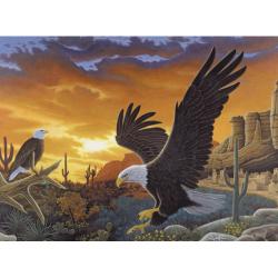 Obrázek Malování podle čísel - Orel