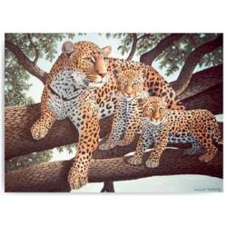 Obrázek Malování podle čísel- Leopard s mláďaty