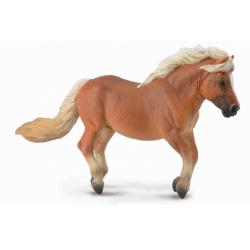 Obrázek Shetlandský pony - ryzák