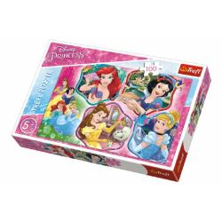 Obrázek Puzzle Princezny koláž 100 dílků 41x27,5cm