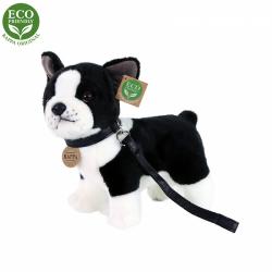Obrázek Plyšový pes francouzský buldoček s vodítkem stojící 23 cm ECO-FRIENDLY