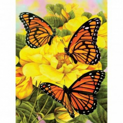 Obrázek Malování podle čísel - Motýlci na žlutých kytkách