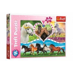 Obrázek Puzzle Koně 200 dílků 48x34cm v krabici 33x23x4cm