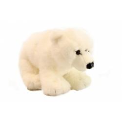 Obrázek Plyš Lední medvěd