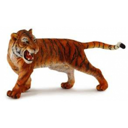 Obrázek Tygr sibiřský