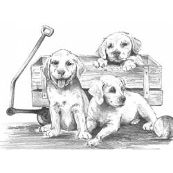 Obrázek Maľovanie SKICOVACÍMI Ceruzky - Šteniatka s vozíkom