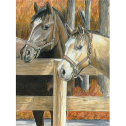 Obrázek Malování podle čísel PASTELKAMI - Koně ve stáji