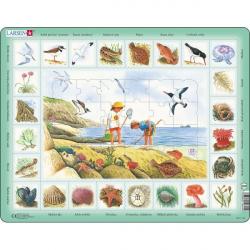 Obrázek Puzzle Život u moře 48 dílků