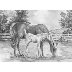 Obrázek Malování SKICOVACÍMI TUŽKAMI - Kůň a hříbě