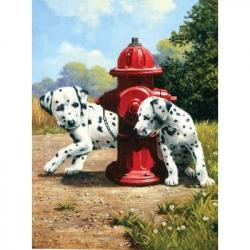 Obrázek Maľovanie podľa čísel - Dalmatínci u červeného hydrantu