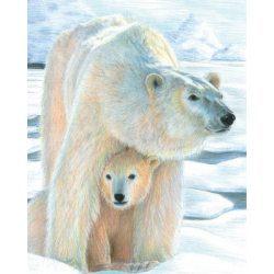 Obrázek Malování podle čísel PASTELKAMI - Lední medvěd