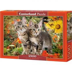 Obrázek Puzzle Castorland 1500 dílků - Kočičí kamarádi