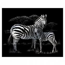Obrázek Vyškrabovací obrázek- Zebry