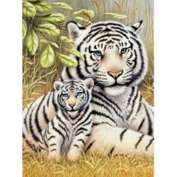 Obrázek Malování podle čísel - Tygr-matka s mládětem