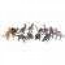 Obrázek Dinosaurus 13 cm