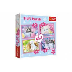 Obrázek Puzzle 4v1 Kočičí zábava 28,5x20,5cm v krabici 28x28x6cm
