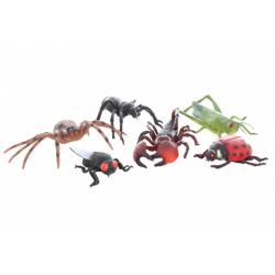 Obrázek Hmyz velký